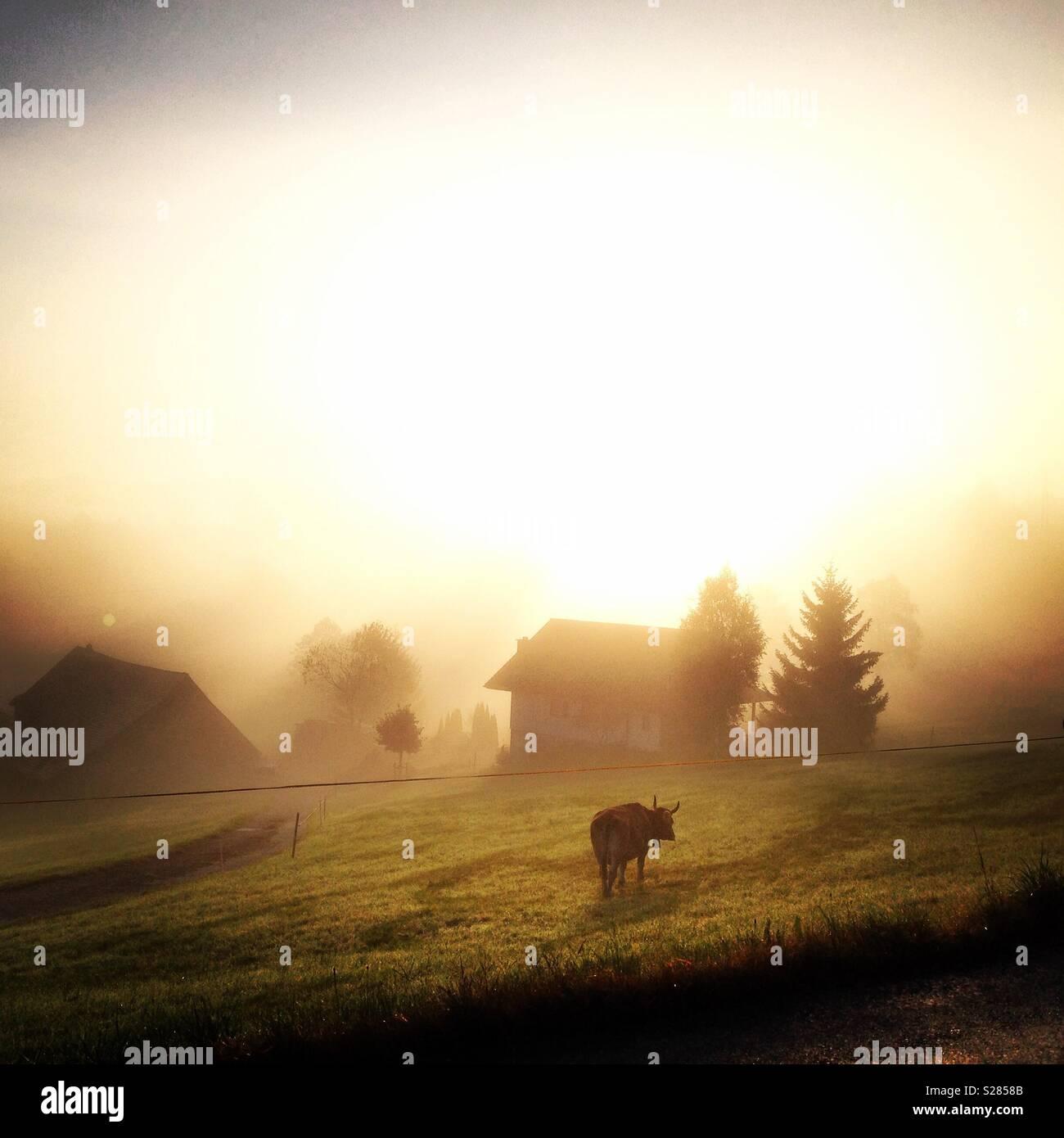 Dreamy Alps - Stock Image