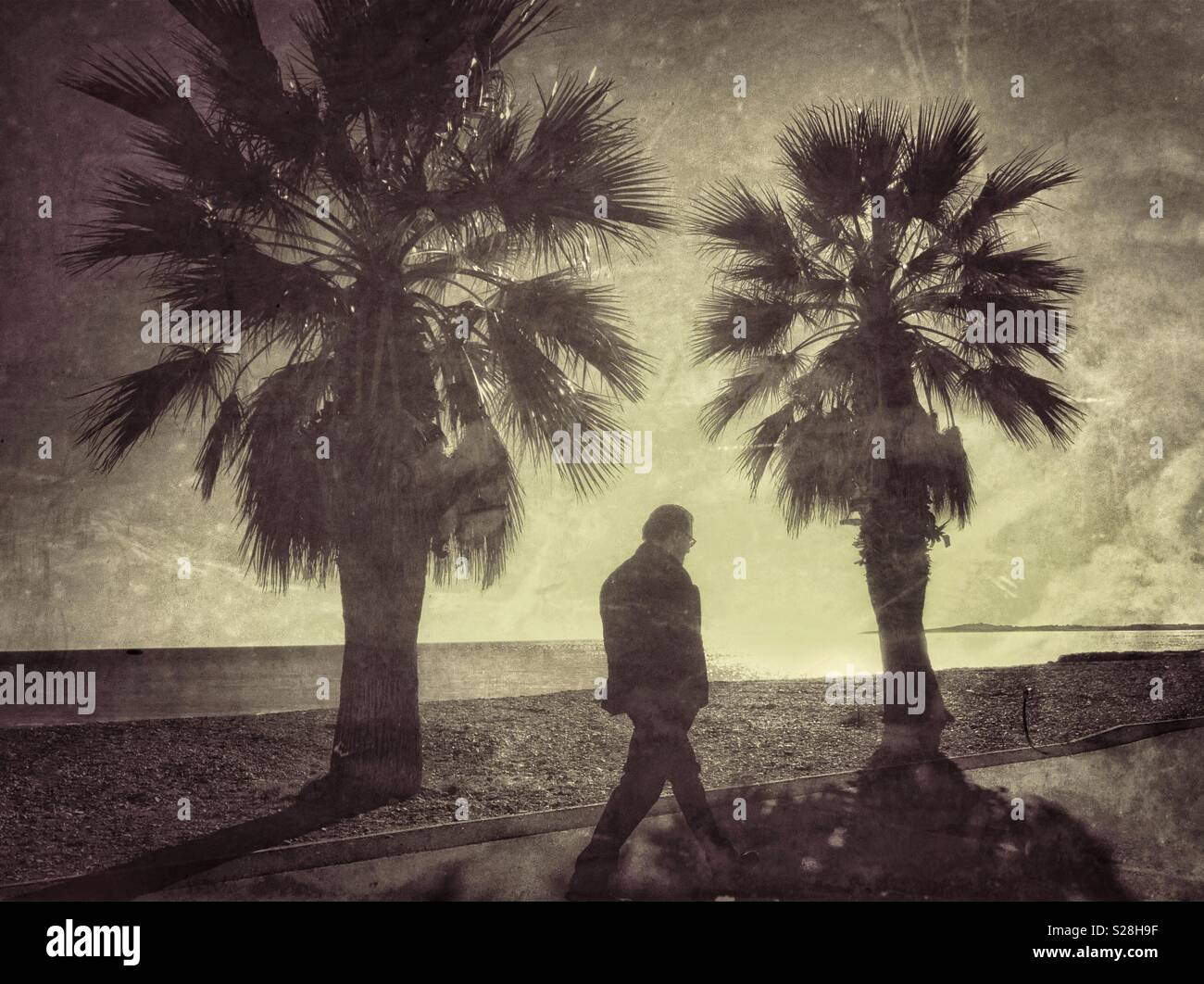 A lone person walks along a path and is framed by 2 palm trees. An image to illustrate depression, isolation or bygone days. Photo Credit - © COLIN HOSKINS. - Stock Image