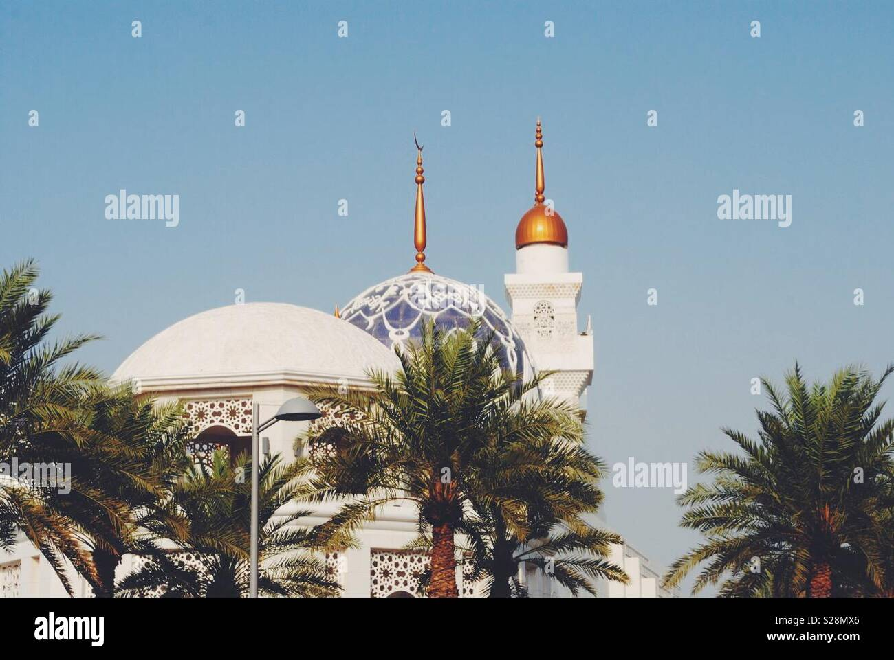 saudi in december - Stock Image