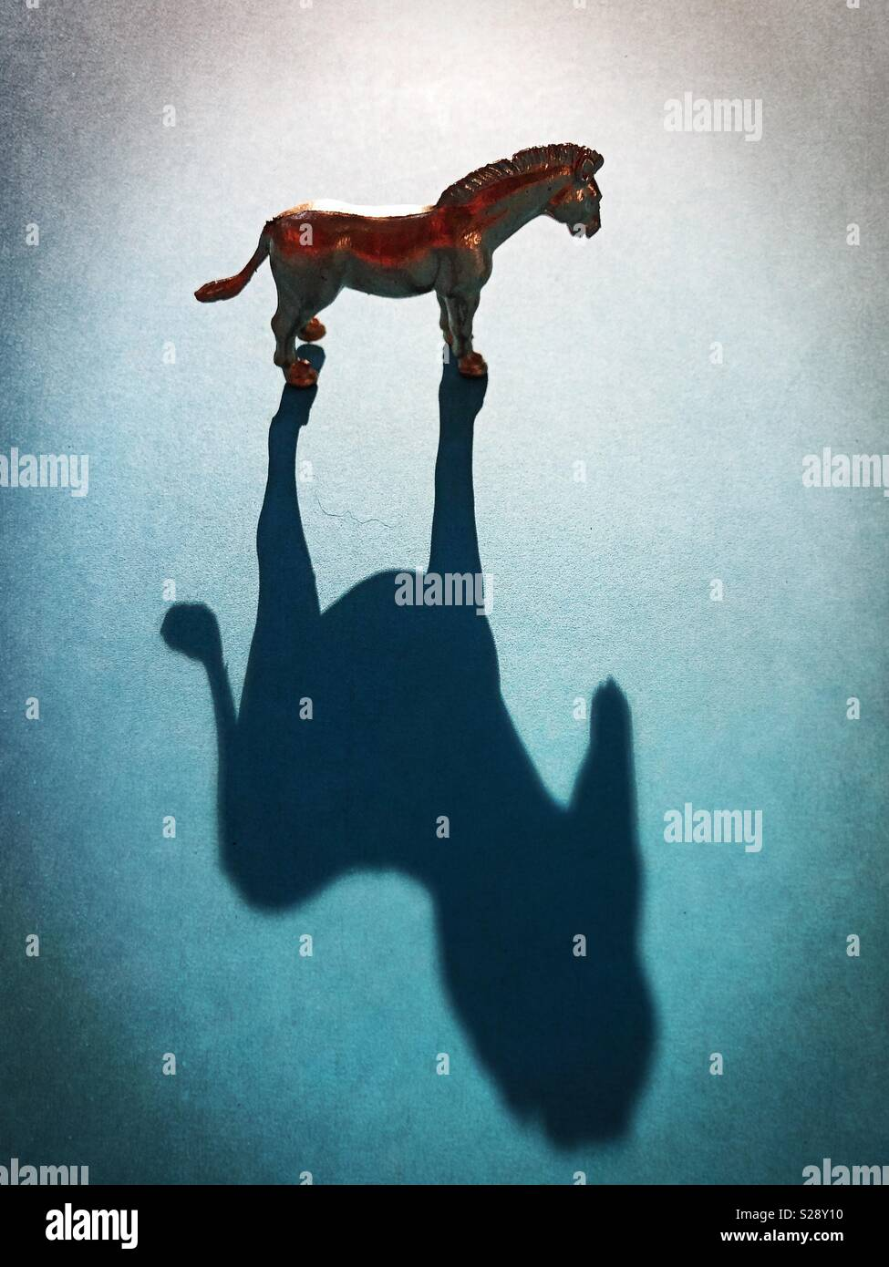 A gold horse figurine and shadow. - Stock Image