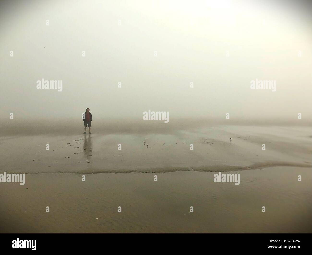 A man standing alone on a foggy beach. - Stock Image