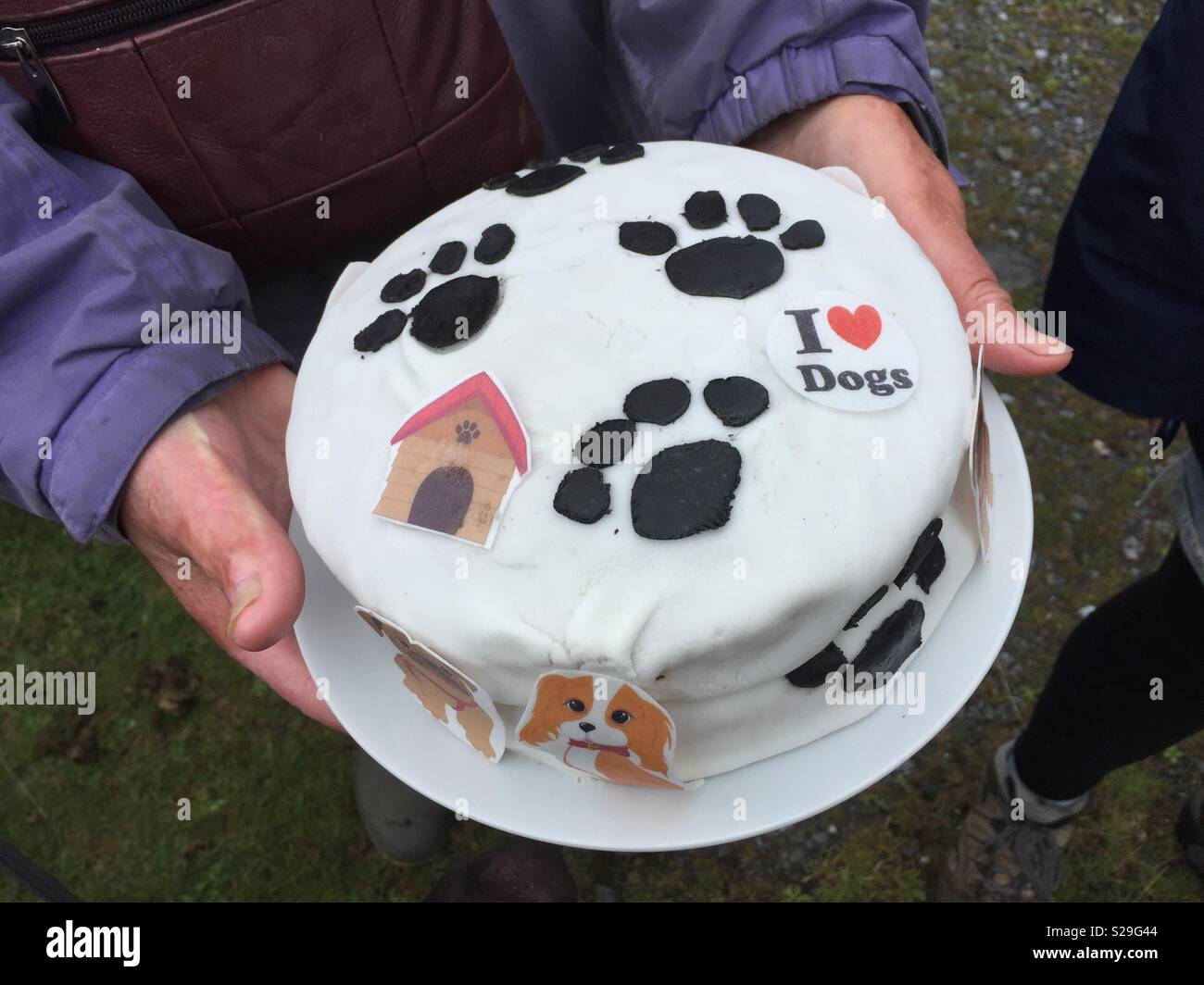 Dog Design Birthday Cake