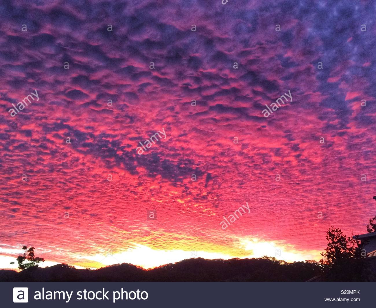 A sea of Glorious bright pink and purple clouds at sunset in Australia - Stock Image