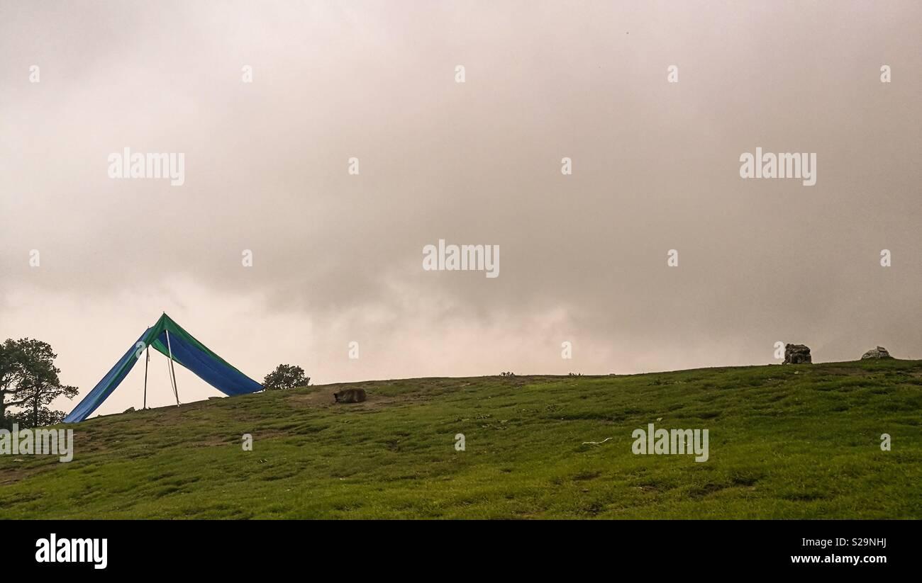 Mcleodganj, Himachal Pradesh, India - Stock Image