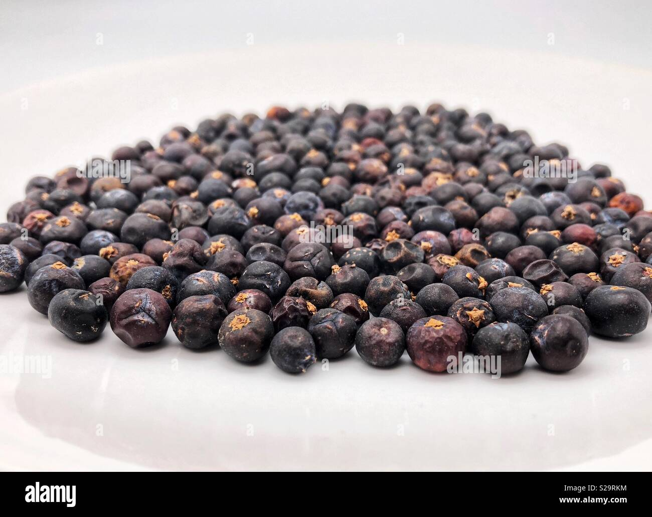 Juniper berries on a white plate - Stock Image