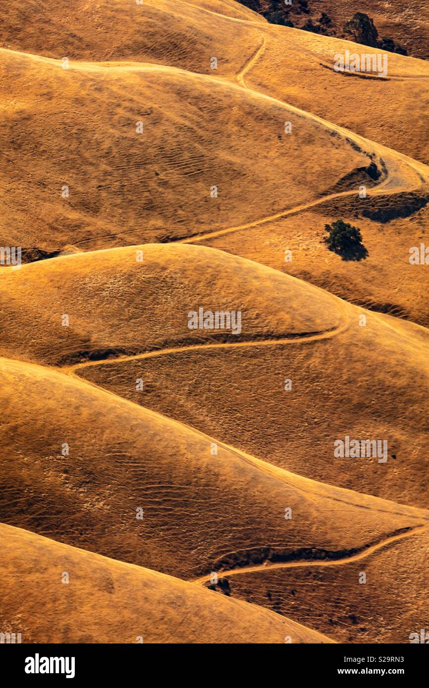 East Bay aerial - Stock Image