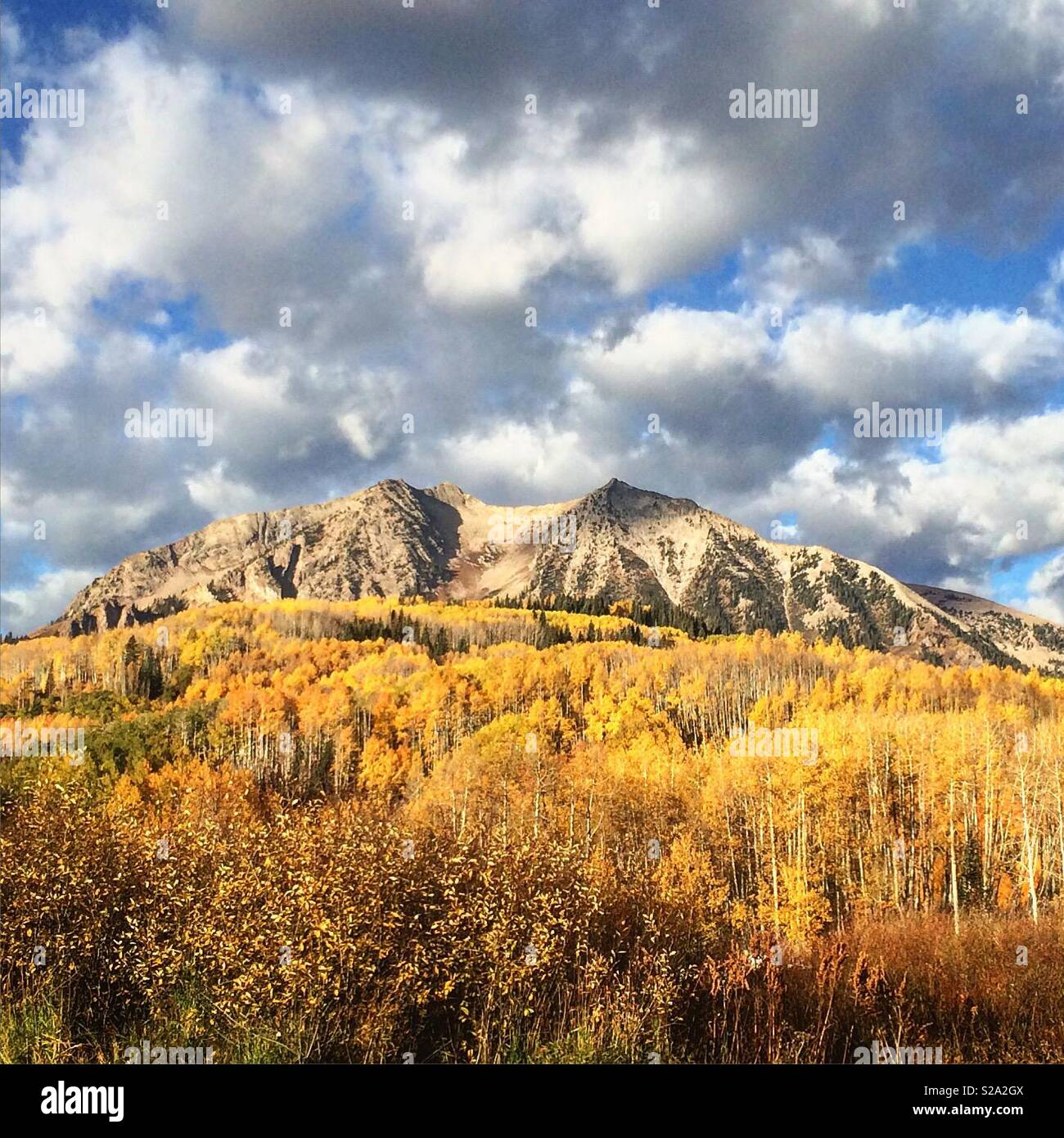 Gunnison mountain in fall with yellow foliage was taken in Gunnison County, Colorado, USA. - Stock Image