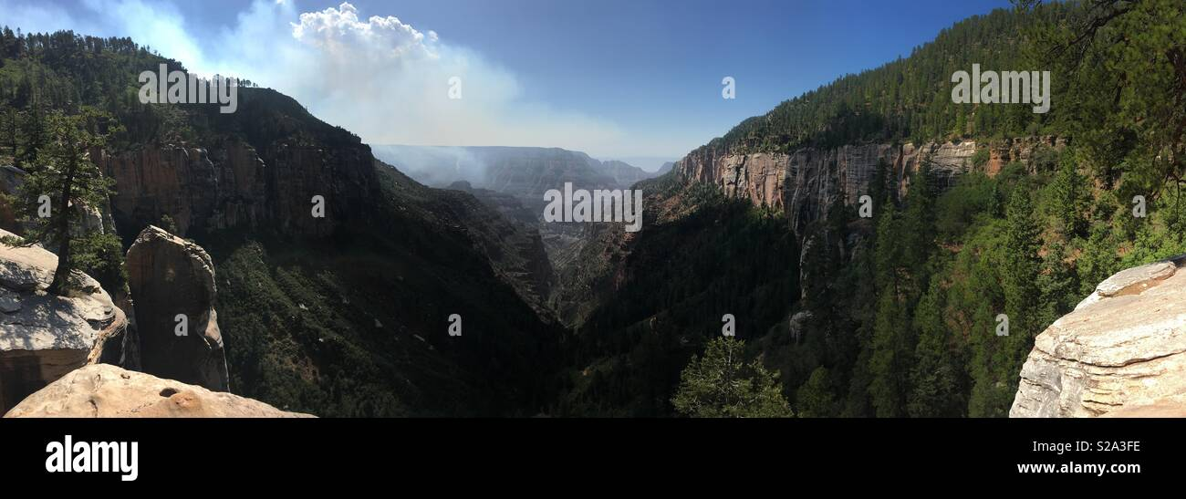Smoke from Wildfires rises above Bright Angel Canyon as seen from the North Kaibab Trail, Grand Canyon National Park, AZ, USA - Stock Image