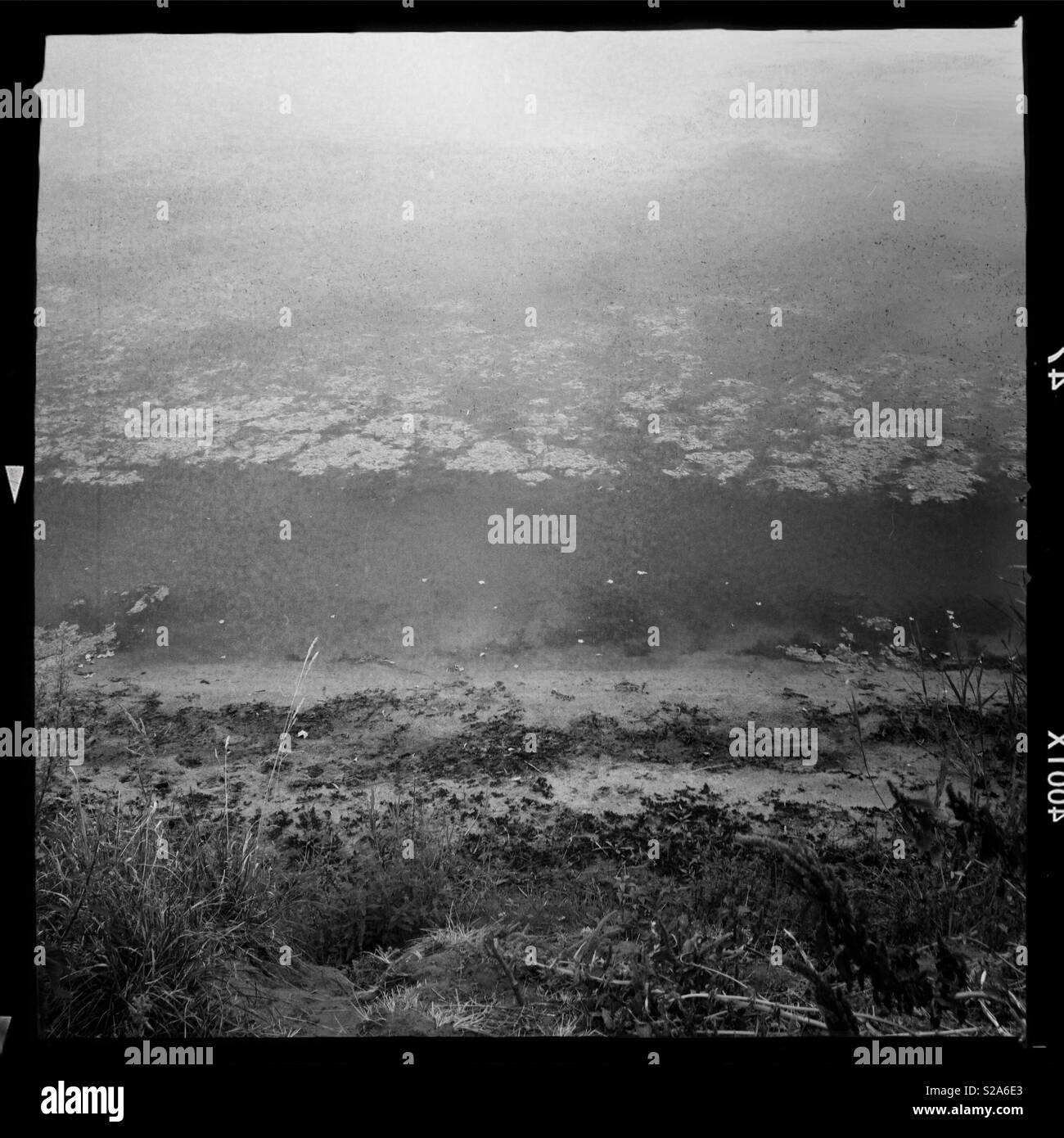 Muddy shore - Stock Image