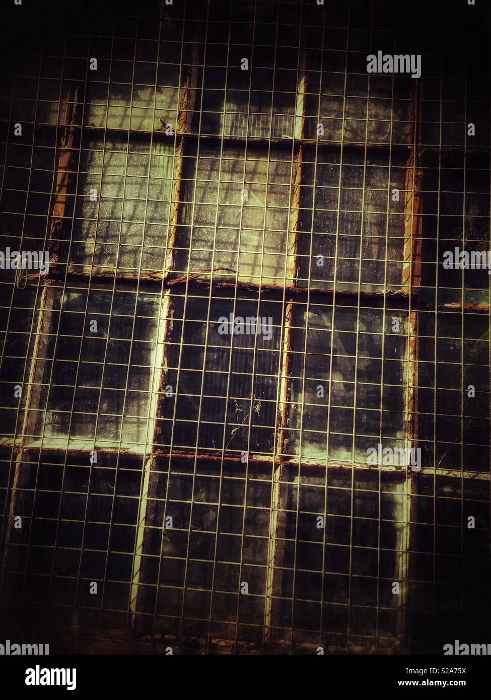 Metal grid in front of a multi sectioned glass window, at an angle. Looks vintage. - Stock Image