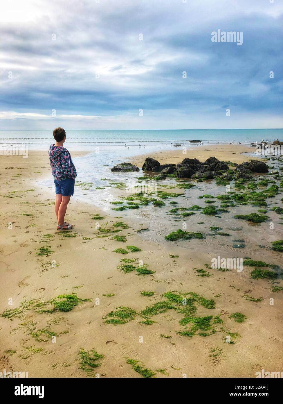 Middle aged woman looking out towards the horizon across a beach and the sea. - Stock Image