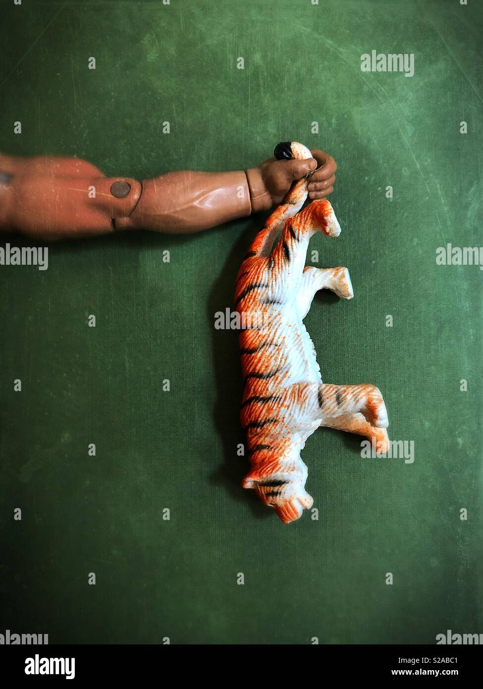 Conceptual: tiger by the tail. - Stock Image