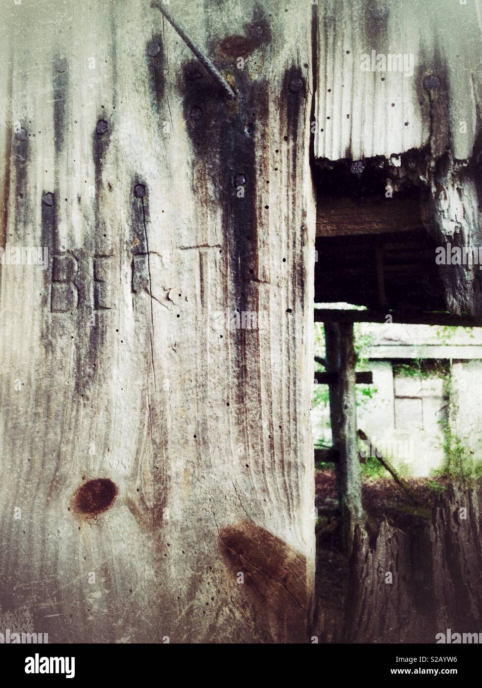 The name BERT is carved into an old, decrepit barn door - Stock Image