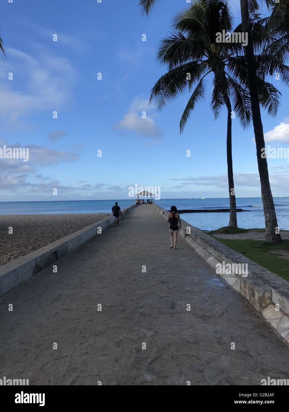Scenery In Waikiki Beach Hawaii Stock Photo 311259271 Alamy