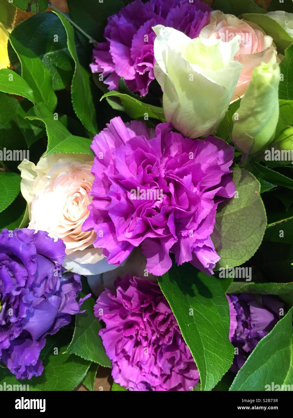 Lisianthus blooms in a bouquet at a florist, New York City, USA - Stock Image