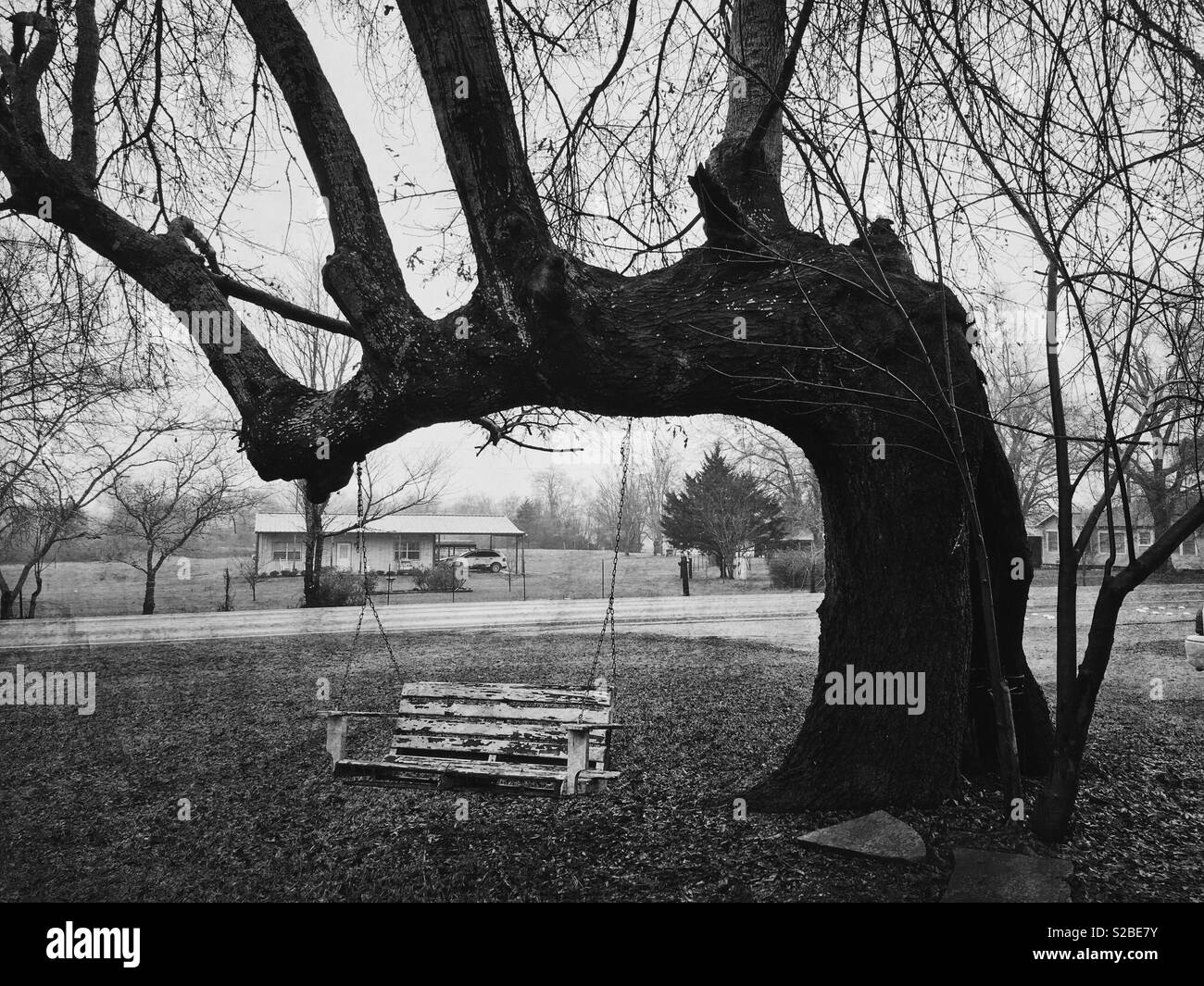 A black and white photo of an old swing on a tree on a winter day