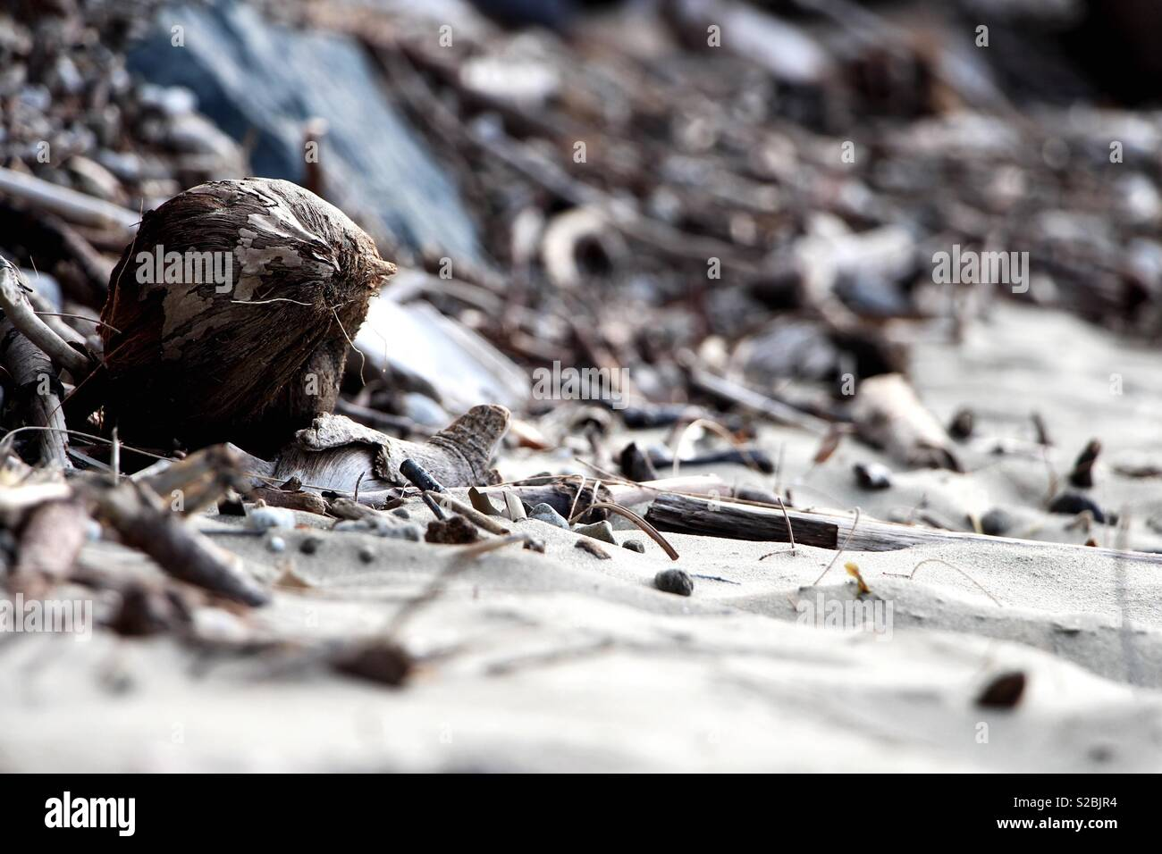 Mess in the Sand - Stock Image