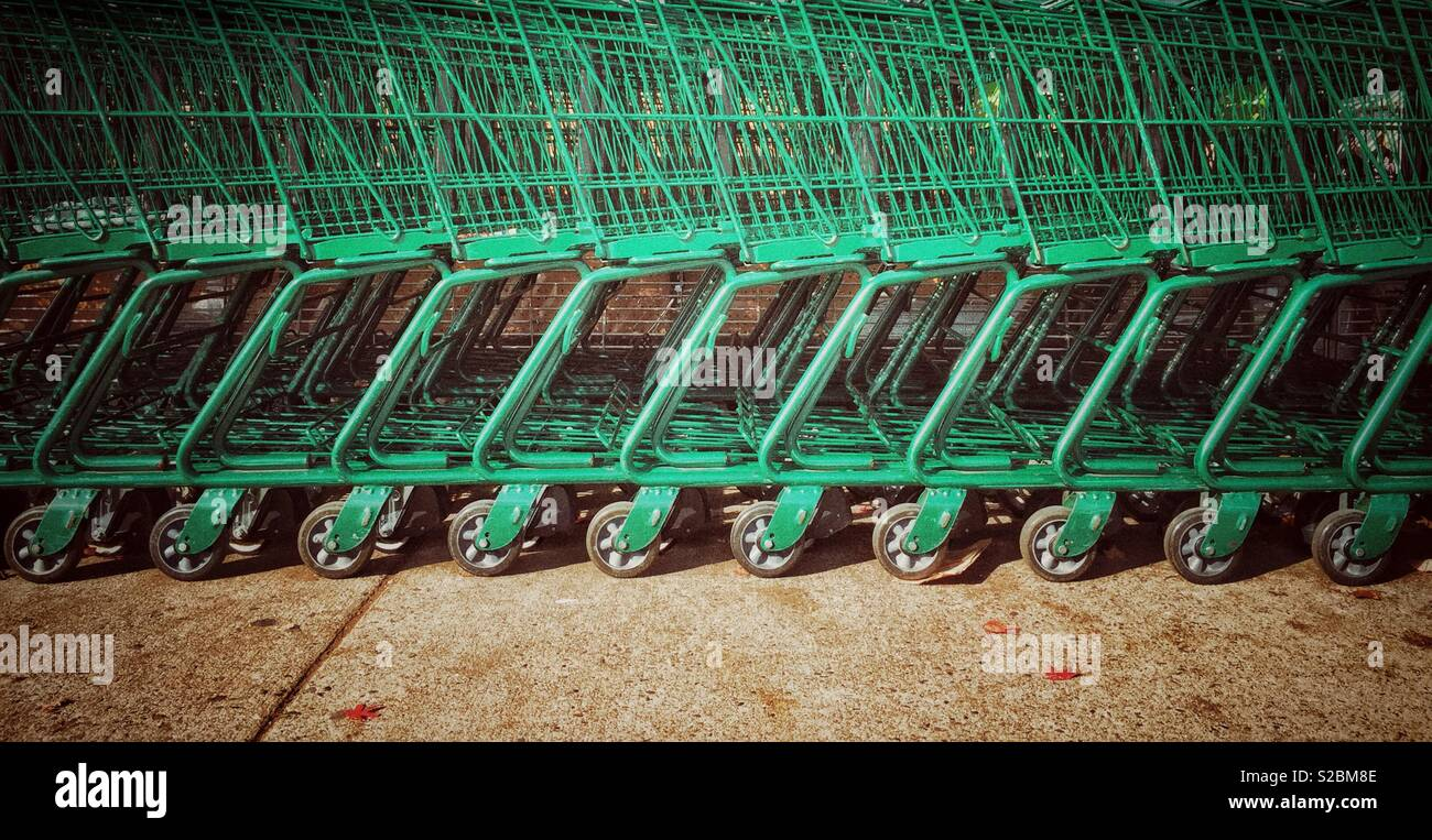 Row of empty green shopping cart trolleys at a grocery supermarket store. Stock Photo
