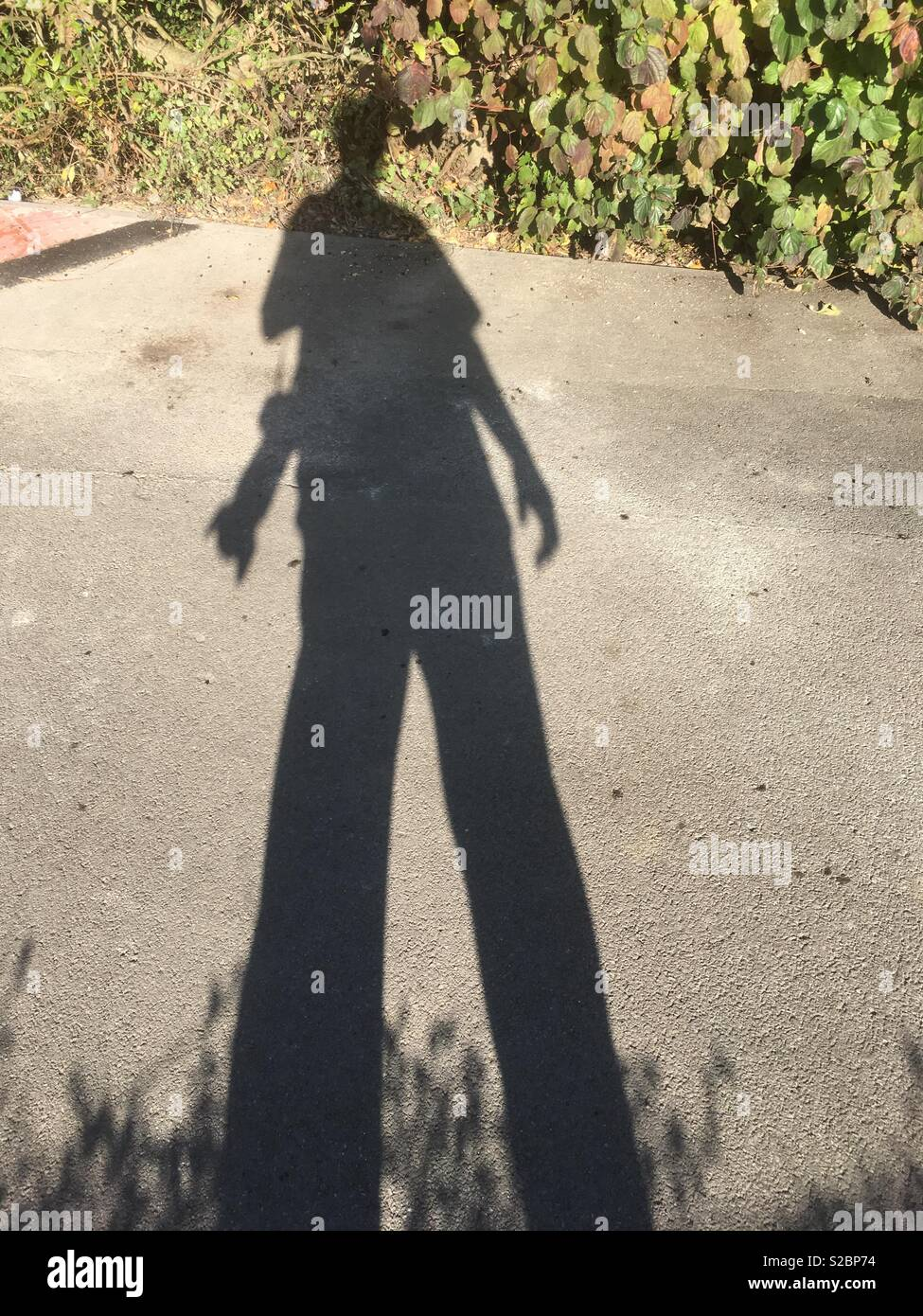 Shadow of the photographer - Stock Image