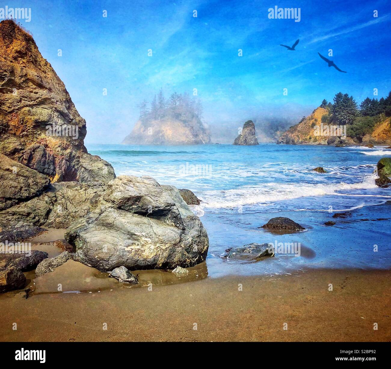 Trinidad Beach - Stock Image