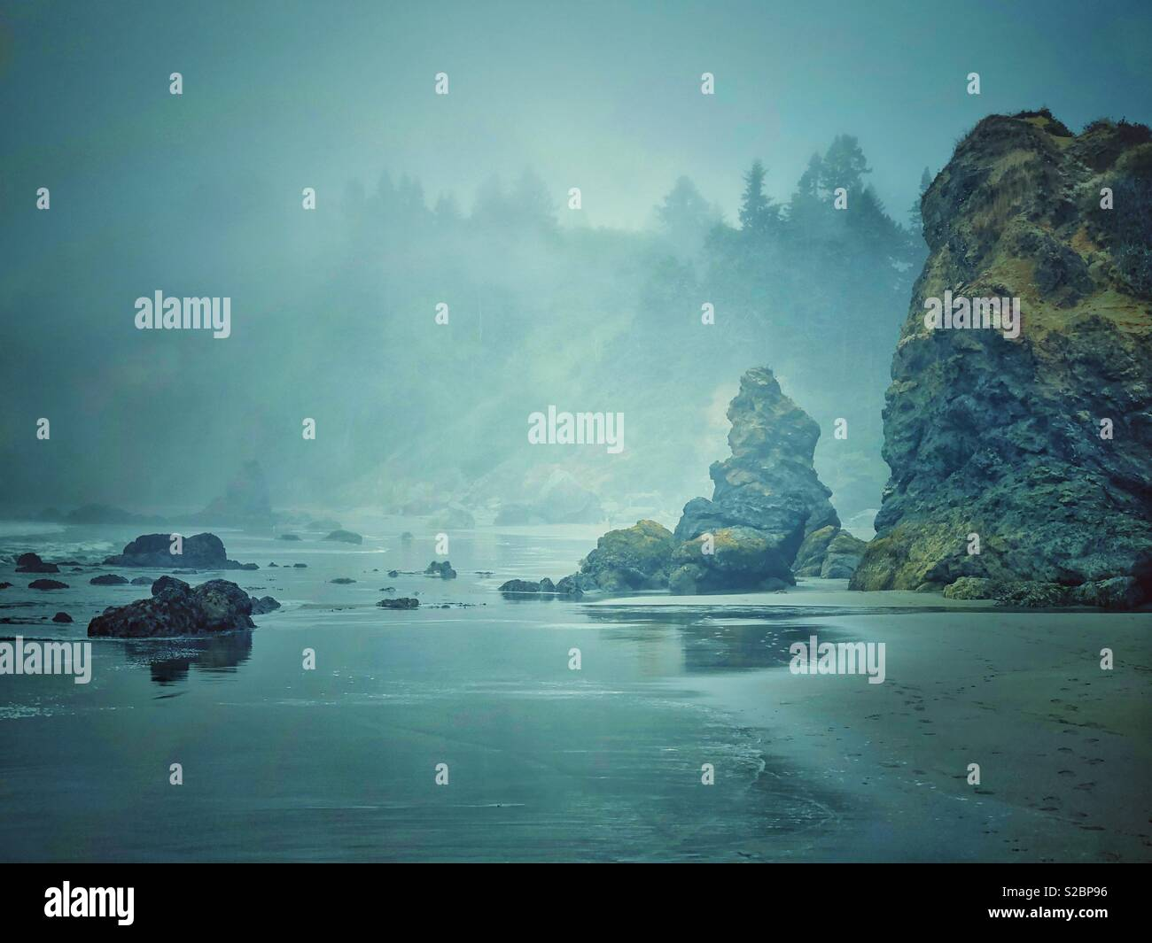 Foggy Beach - Stock Image