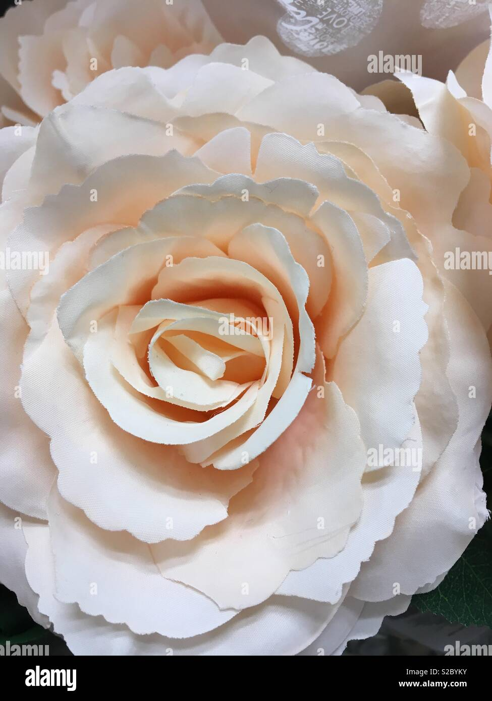 Pinky apricot artificial rose flower centre close up - Stock Image