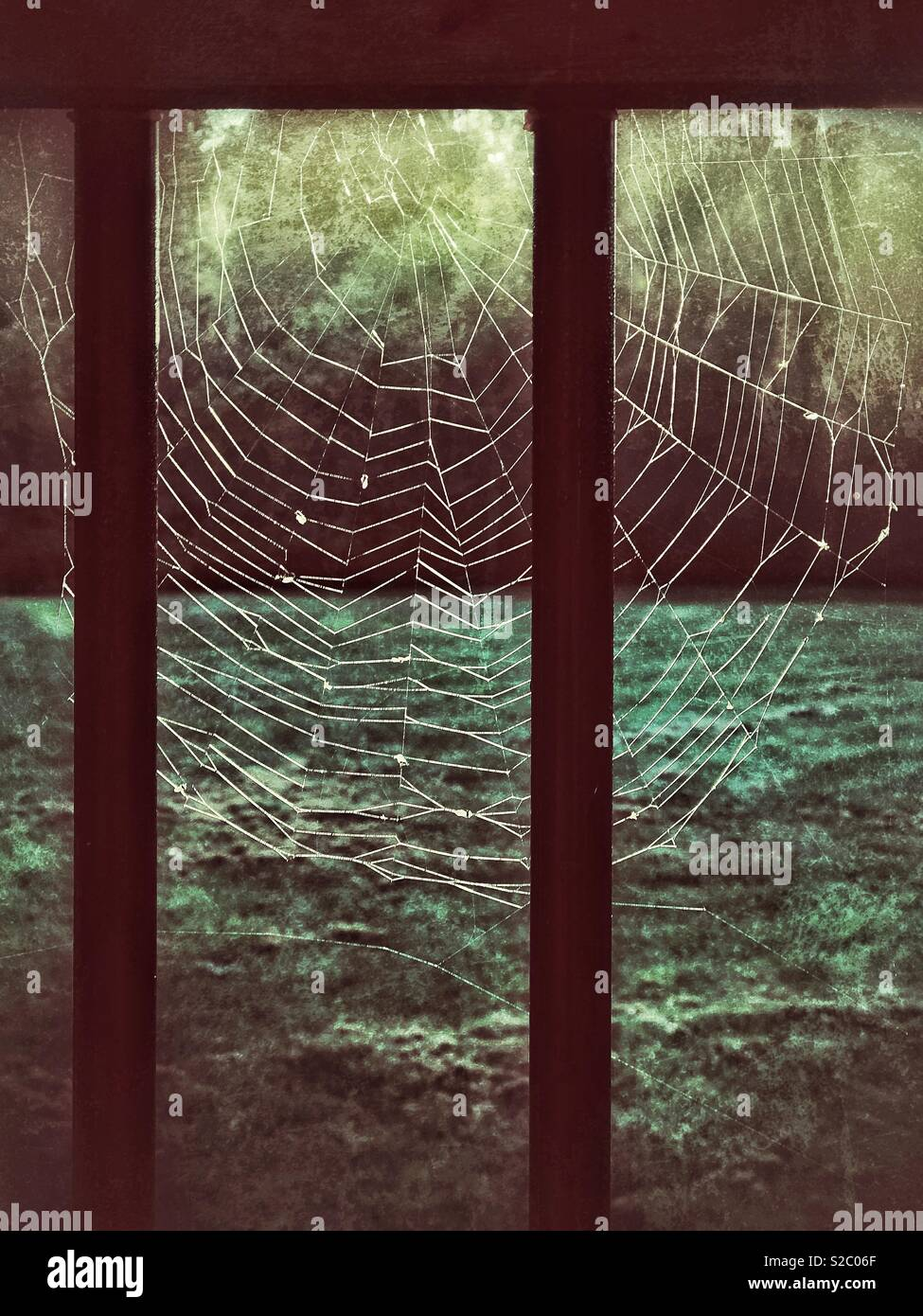 Spiderweb illuminated by light - Stock Image