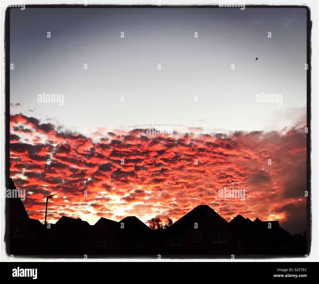 Early morning sky in Midlothian Scotland - Stock Image