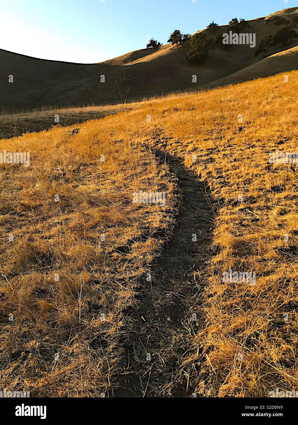 Path through foothills at dusk - Stock Image