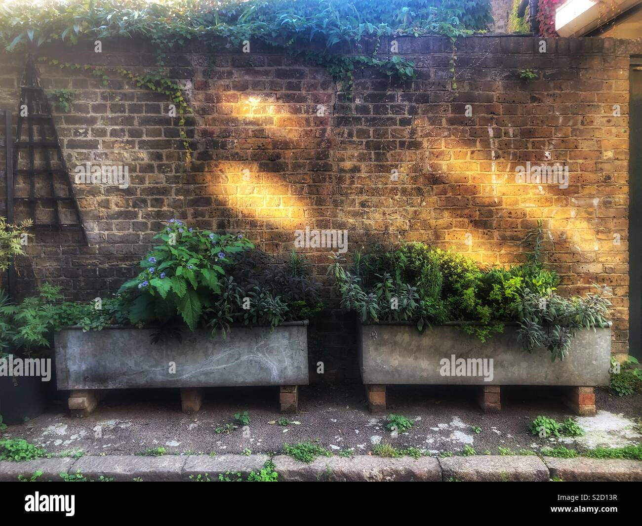Rustic metal herb raised planters in a trough style against a brick wall with slanted of sunlight - Stock Image