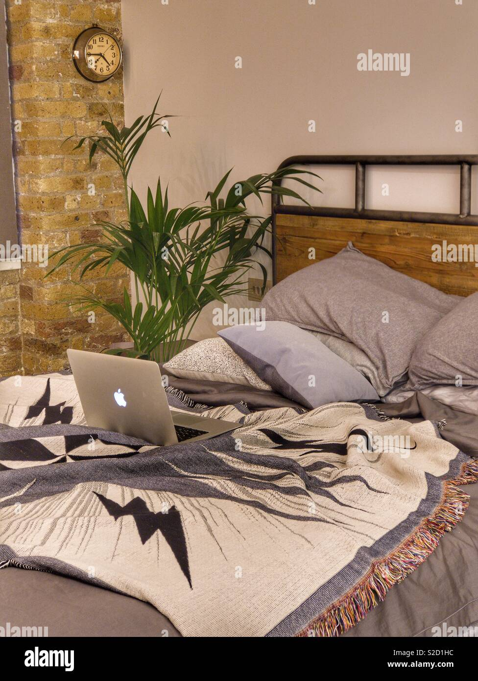 Messy bed in loft style industrial chic bedroom with palm tree and mac laptop - Stock Image