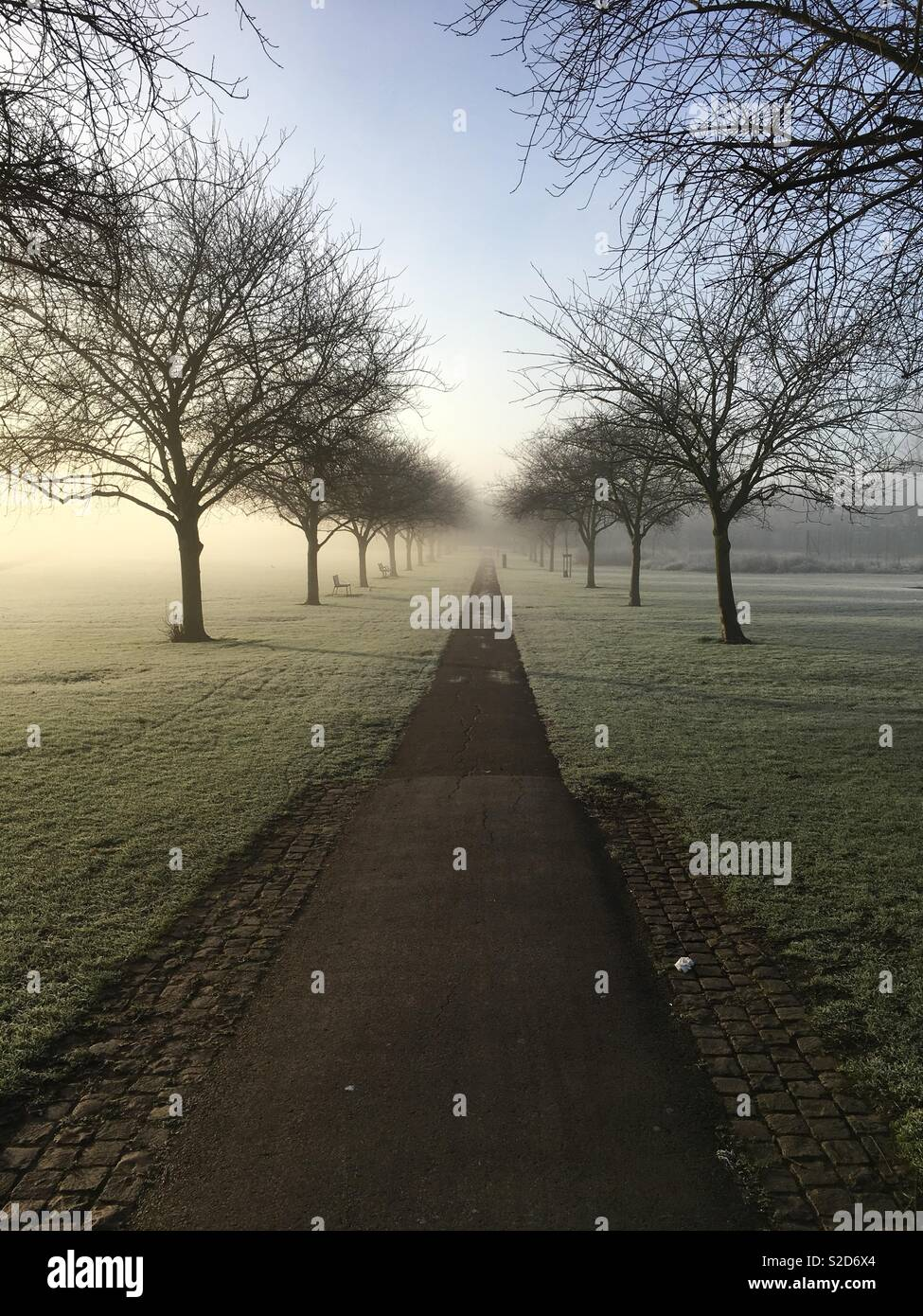 Misty path at Jesus Green in Cambridge - Stock Image