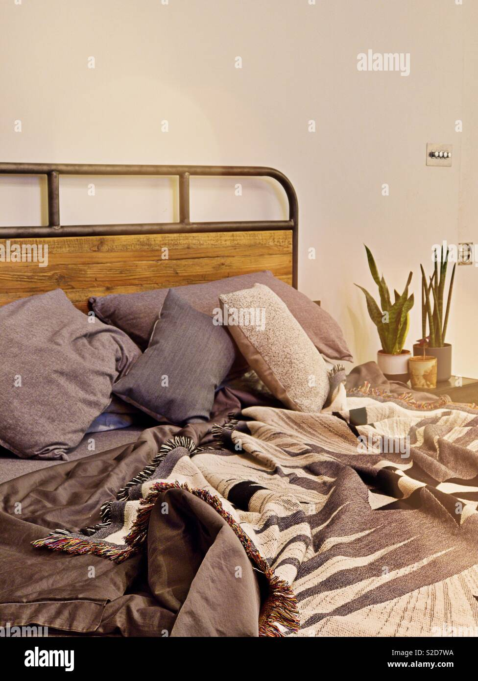 Cosy bed with grey and navy bedding and copy space above in loft style warehouse apartment with houseplants on bedside. Minimalist. - Stock Image