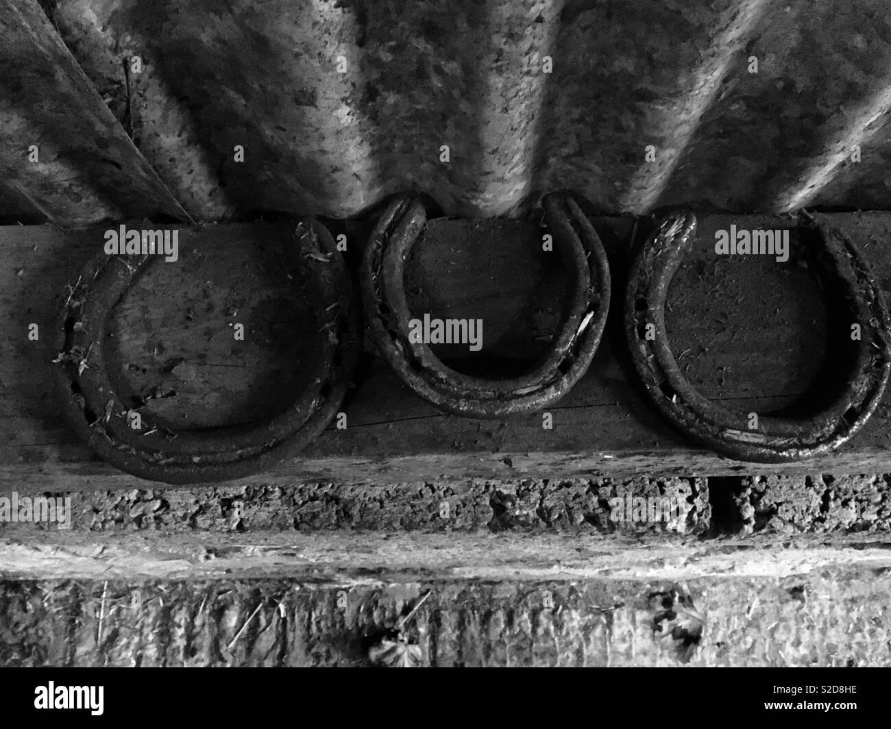 Three lucky horseshoes - Stock Image