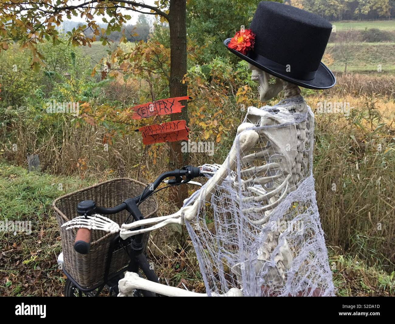 d5fcbaa2e80fa Halloween theme   skeleton with cylinder riding bicycle Stock Photo ...