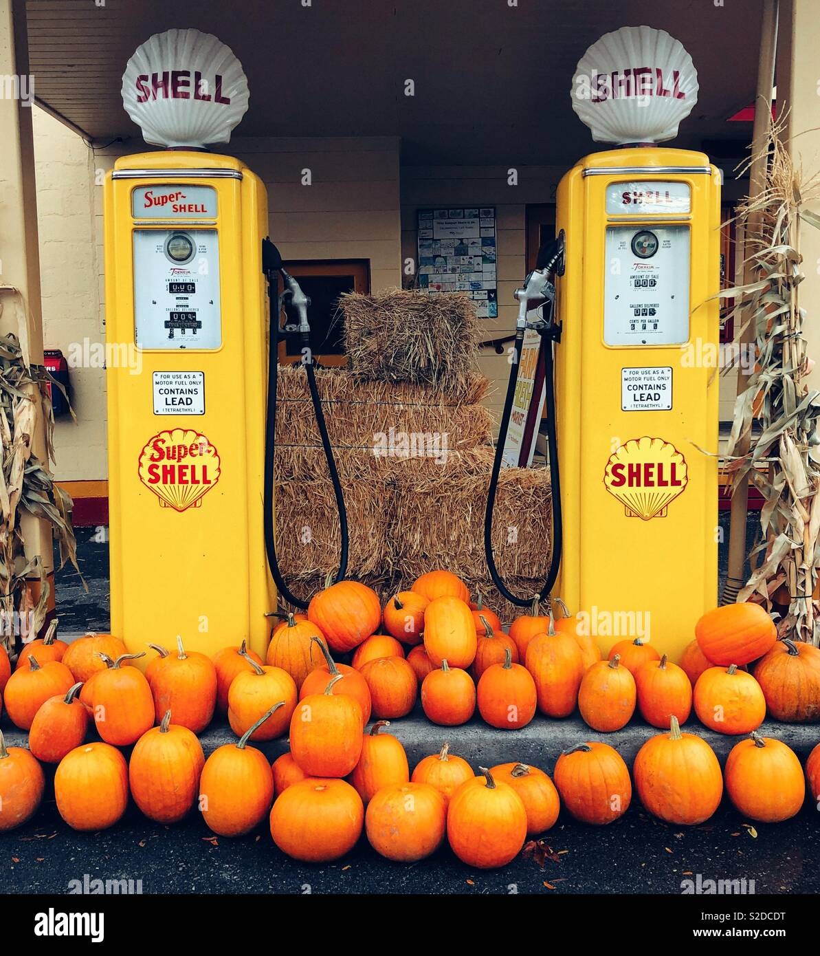 Vintage restored Shell gas station in Issaquah WA decorated with orange pumpkins - Stock Image
