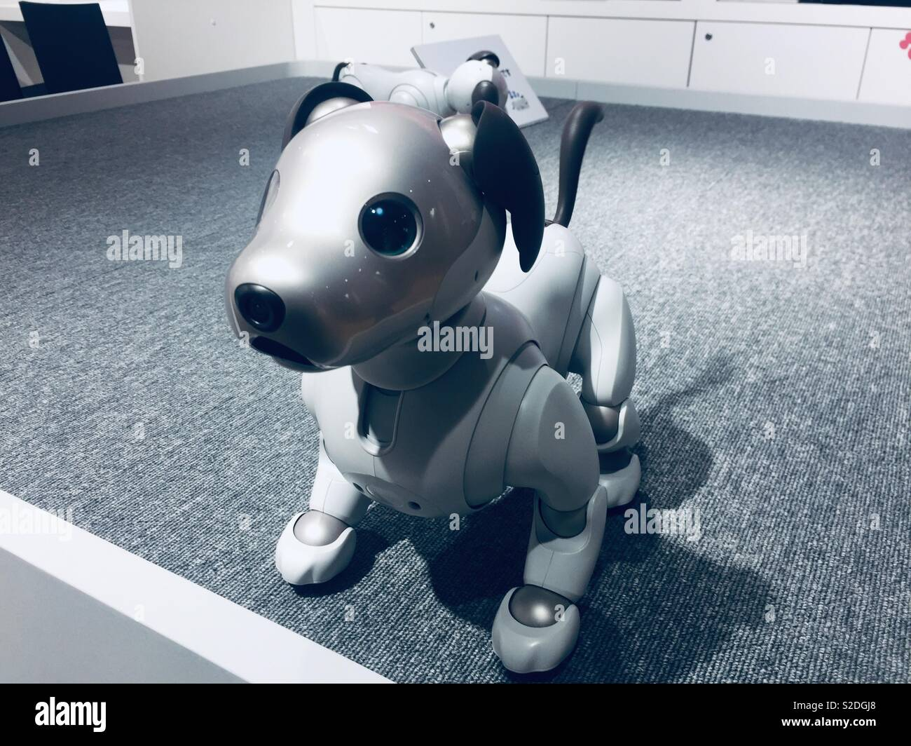 Robot Dog Stock Photos & Robot Dog Stock Images - Alamy