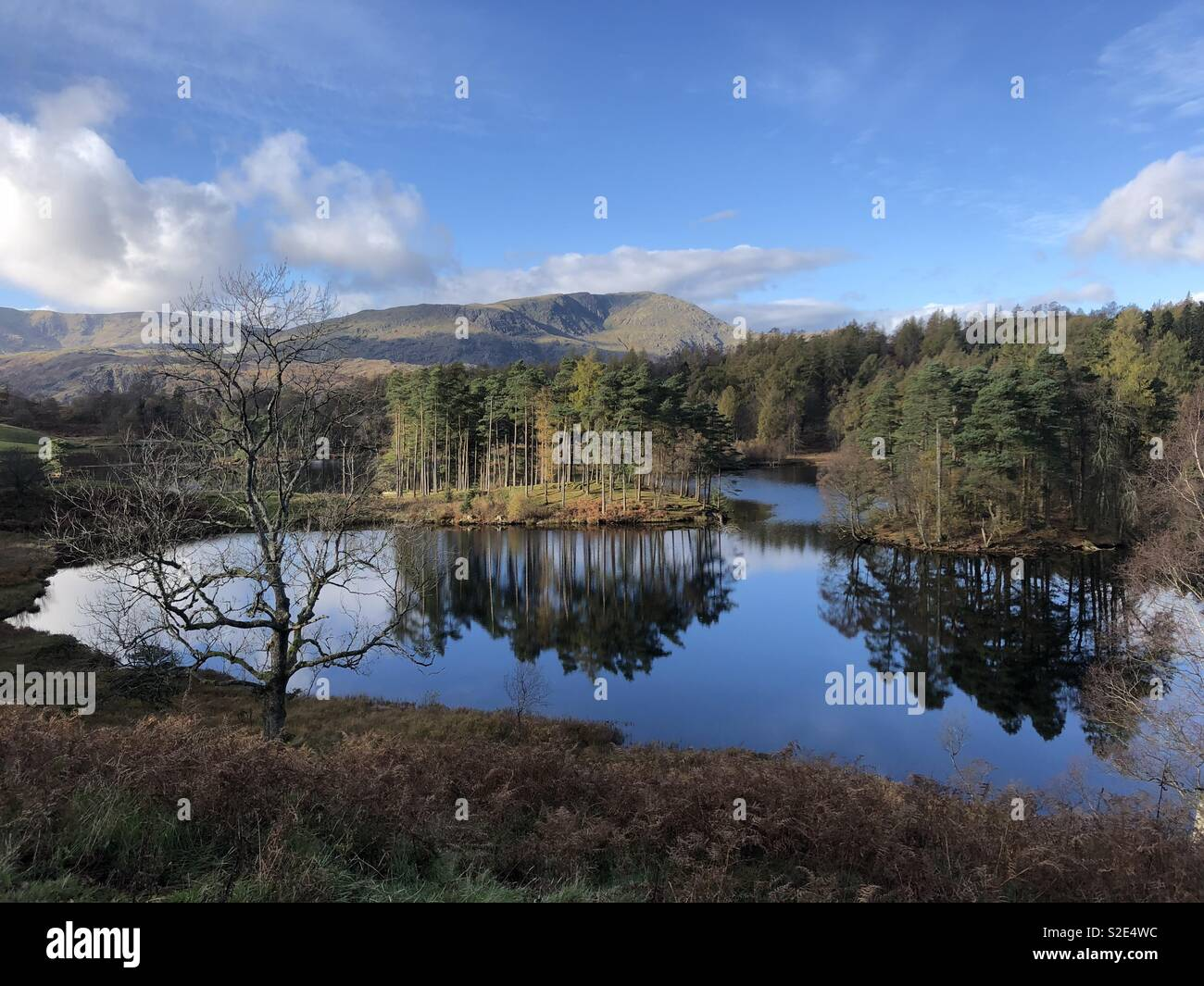 View over Tarn Howes with tree reflections - Stock Image