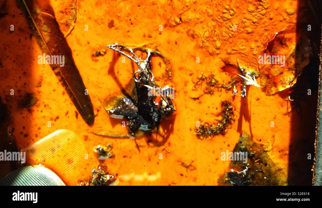 Oil sludge and scrap metal - Stock Image