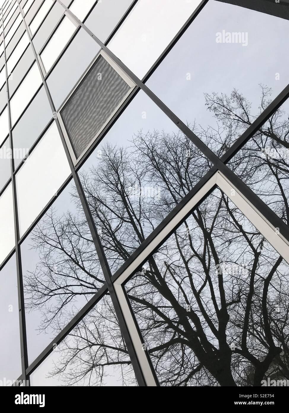 Spiegelhäuserfront - Stock Image
