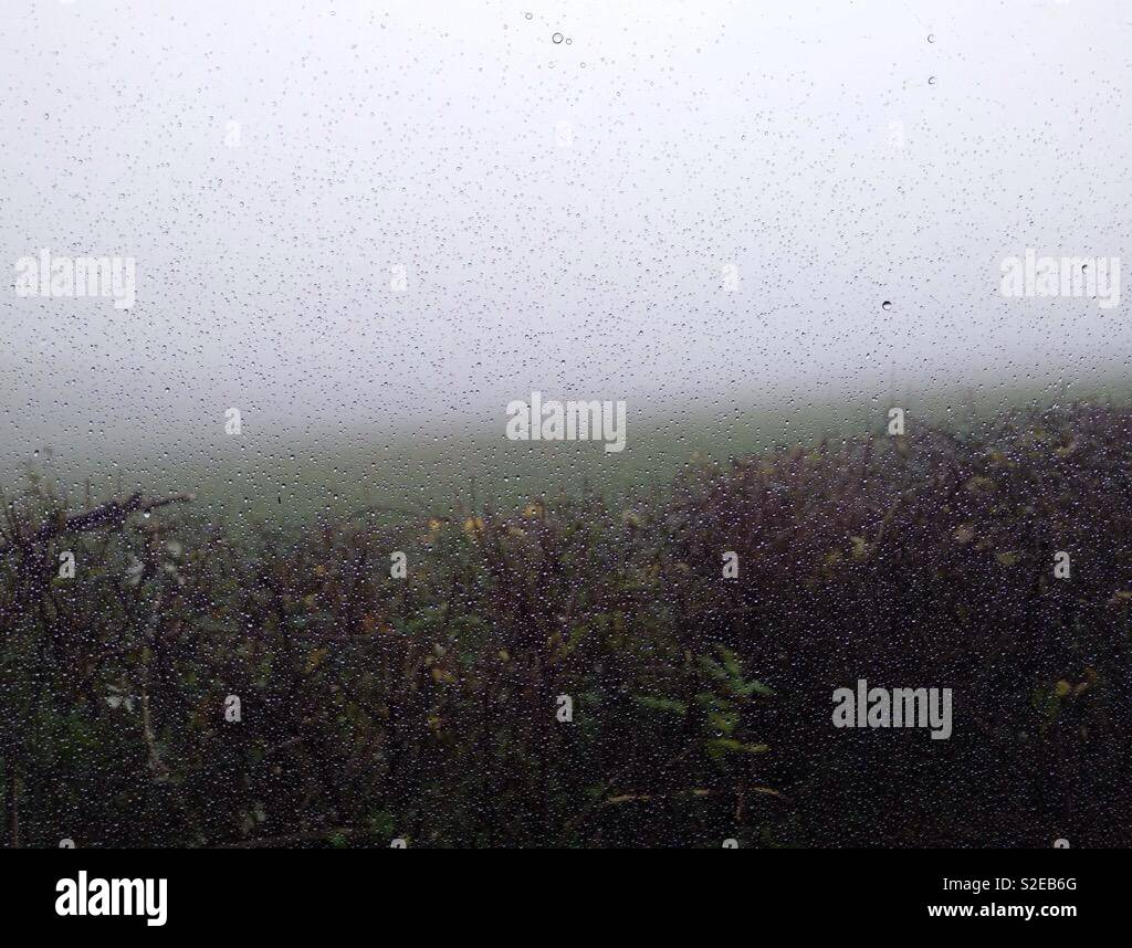 Mizzle damp drizzly grey wet day seen through window. - Stock Image
