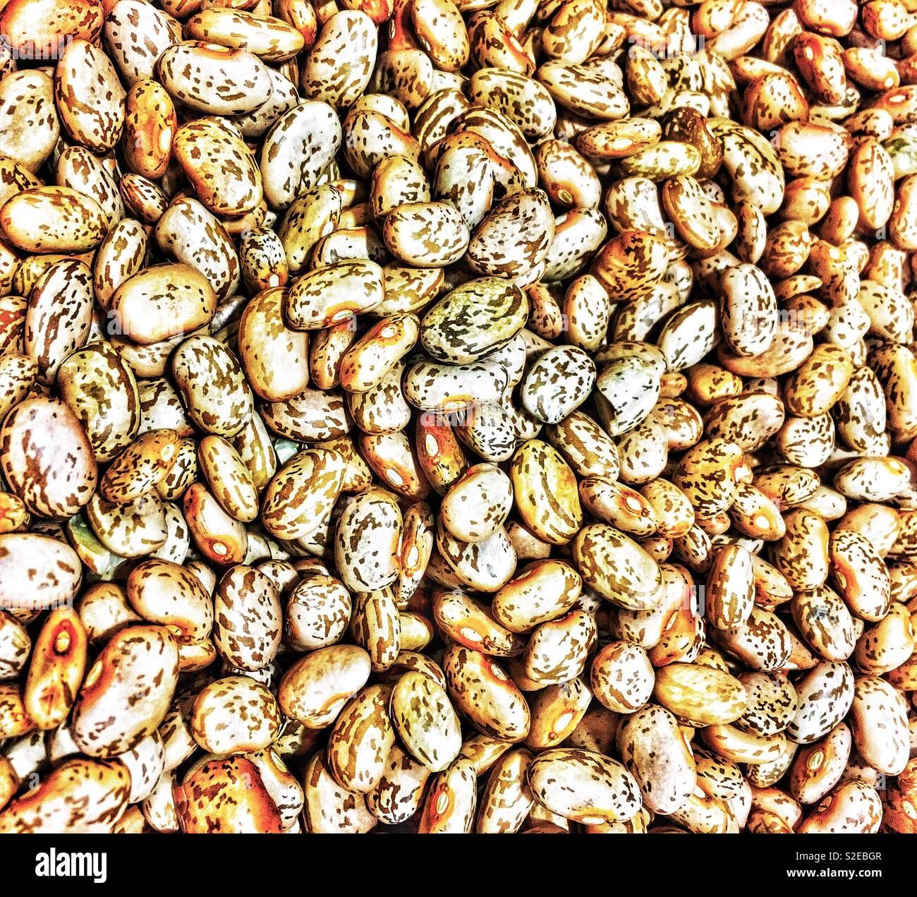 Enhanced photo of pinto beans - Stock Image