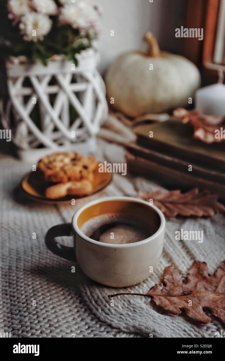 Autumn mornings - Stock Image