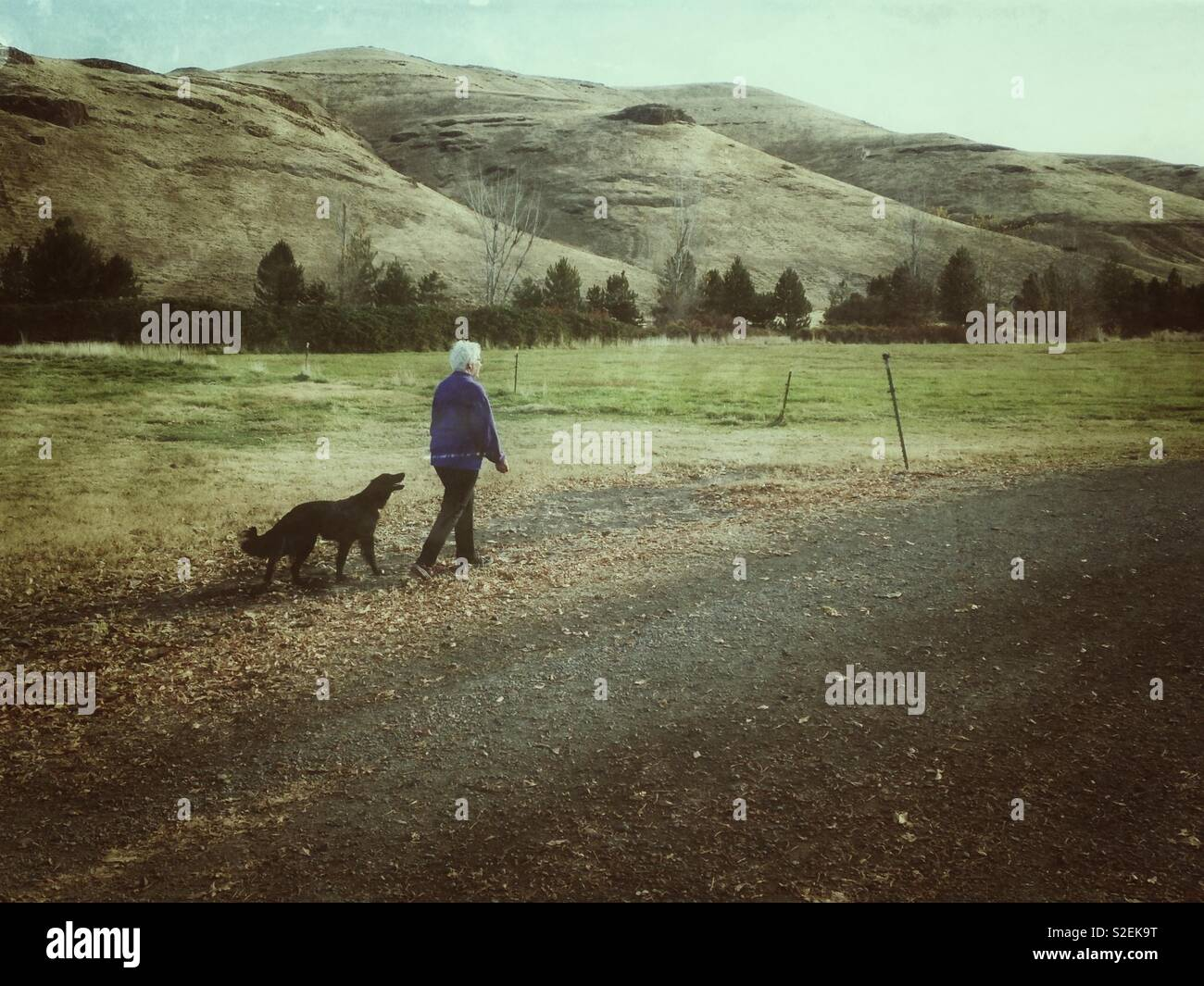Middle aged woman walks near hills with her dog in eastern Washington - Stock Image