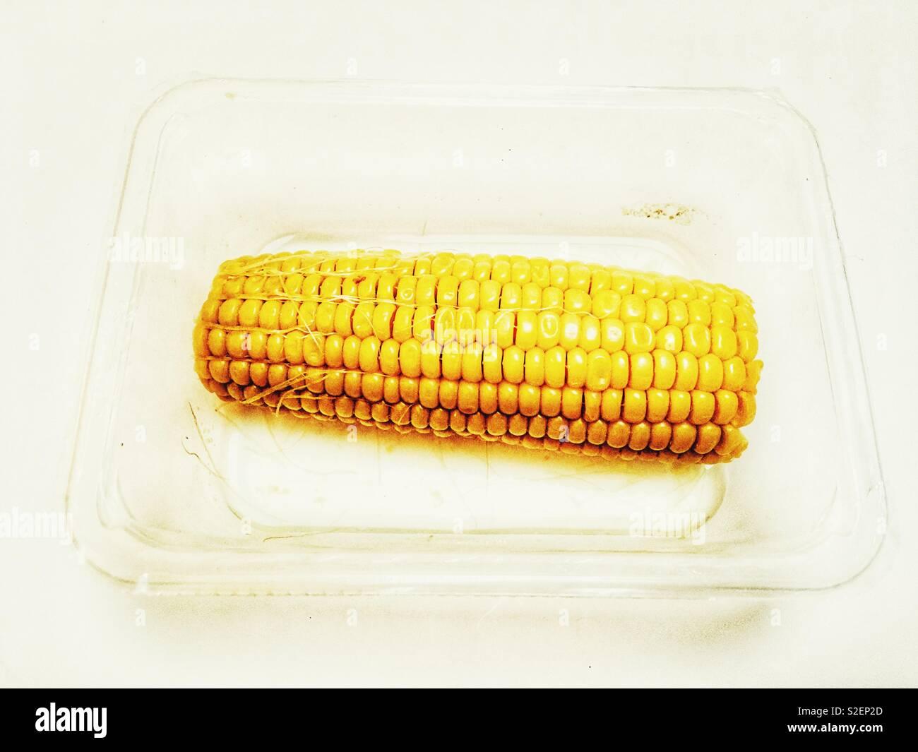 Microwaved corn on the cob - Stock Image