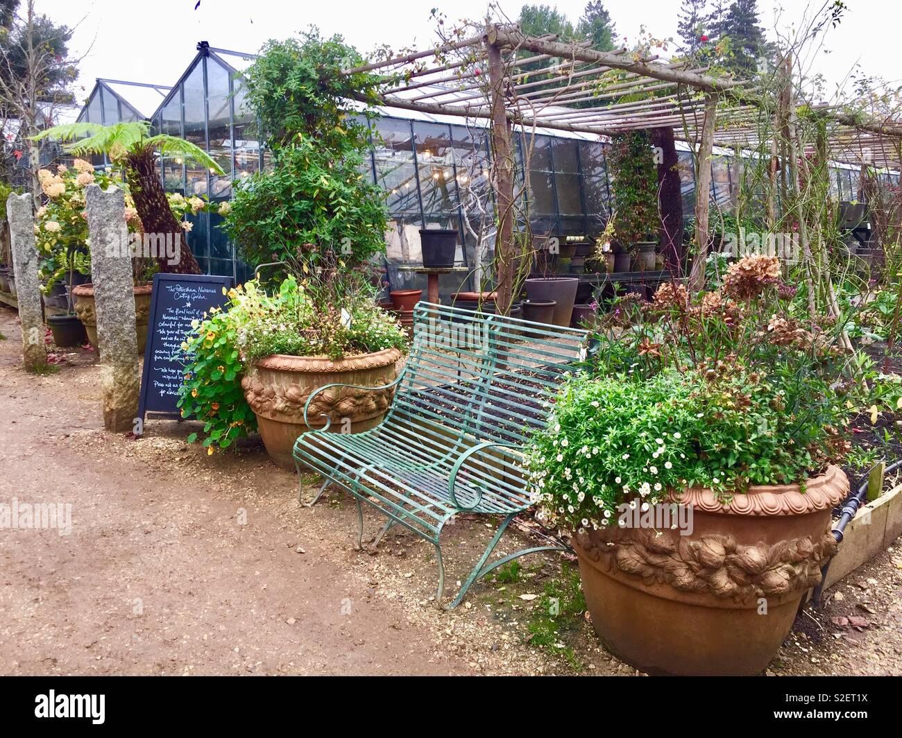 Garden seat, terracotta pots and greenhouses, Petersham Nurseries Stock Photo
