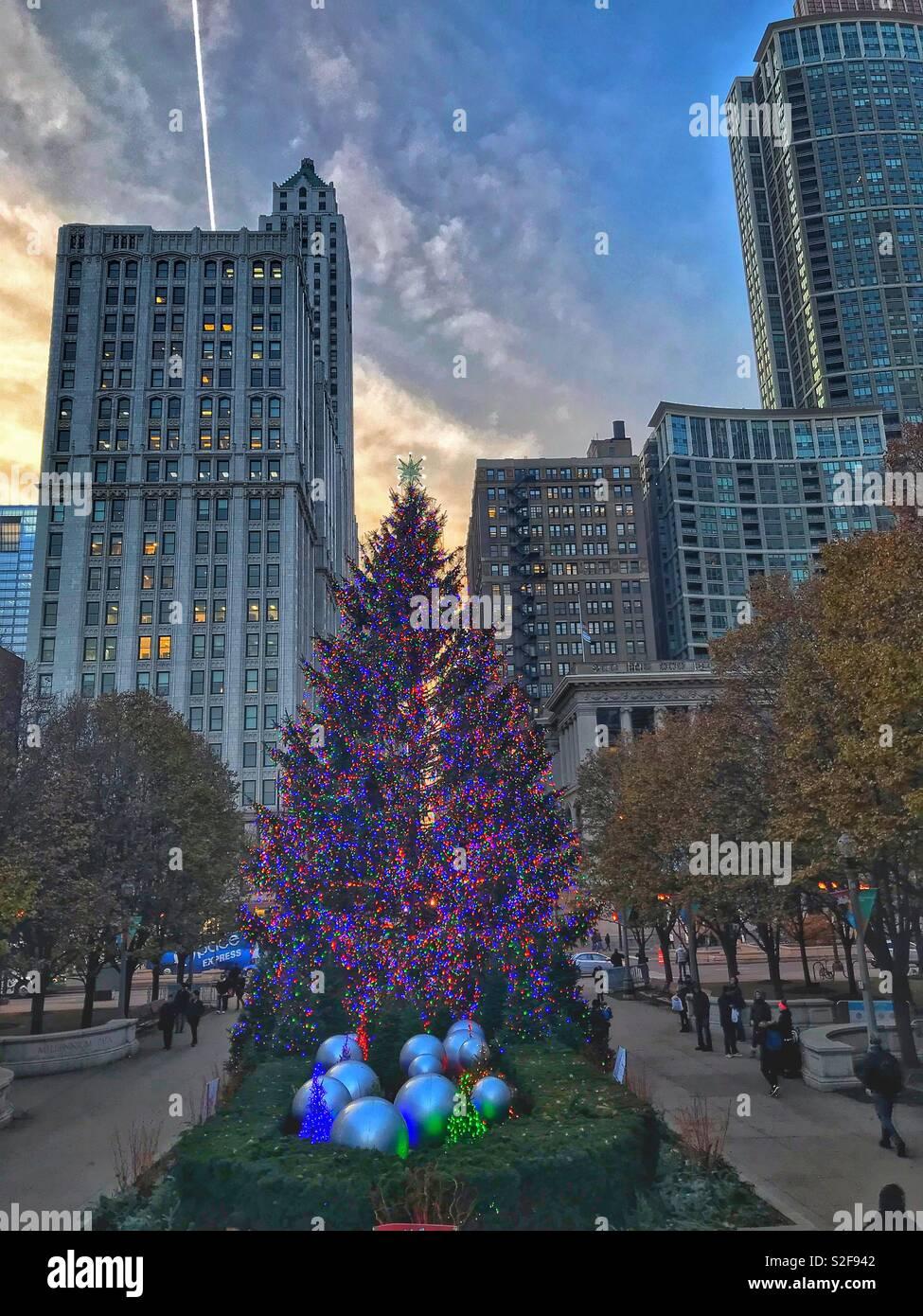 Christmas Tree Downtown Chicago.Christmas Tree Downtown Chicago Stock Photo 311352386 Alamy