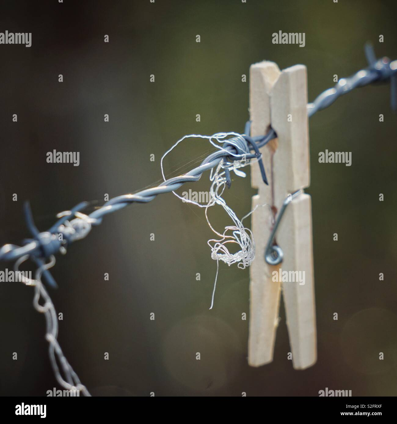 clothespin in the wire fence in the nature - Stock Image