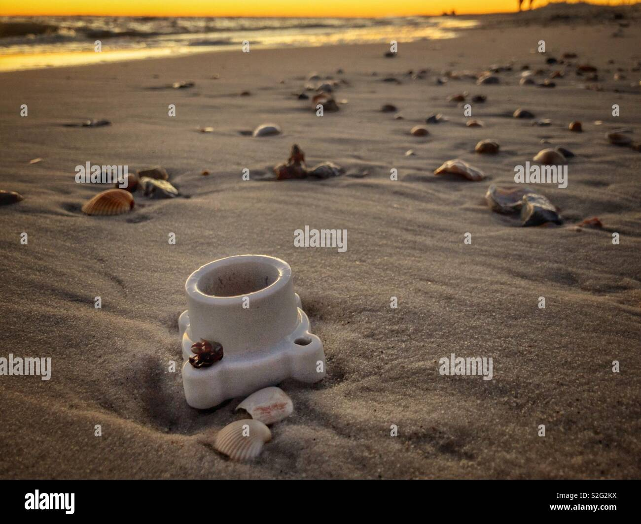 A porcelain light socket cleat receptacle lays on the beach among seashells in Dauphin Island, Alabama. - Stock Image