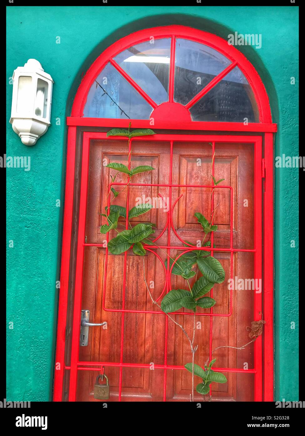 Green wall with red security gate hermanus south africa